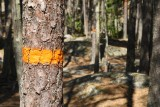 Tivedens nationalpark